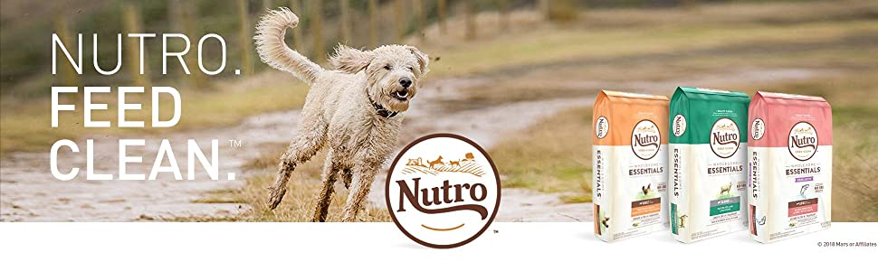 Nutro, Feed Clean, Dry Dog Food, Senior, Adult, Puppy, Puppies