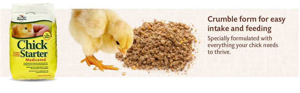 chick starter; chick starter feed; chick starter medicated