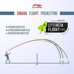 Flight projection