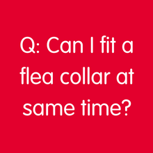 Q: Can I fit a flea collar at same time?
