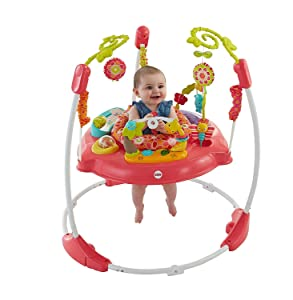 0afae96e82b5 Fisher-Price Pink Petals Jumperoo  Amazon.ca  Baby