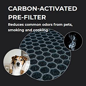 Activated Carbon Filter will eliminate odors from pets, smoking cooking, and VOCs.