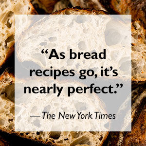 bread, baking, sourdough starter, tartine manufactory, new york times, flour water salt yeast