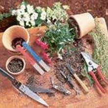 Jardinage et entretien du paysage