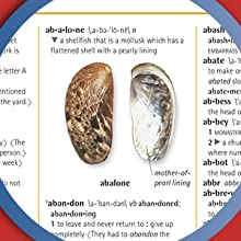 """close-up image of """"abalone"""" photographic definition from Merriam-Webster Children's Dictionary"""