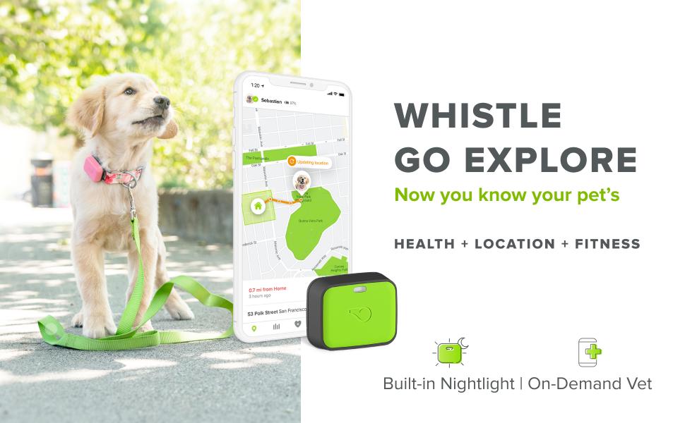 whistle go explore