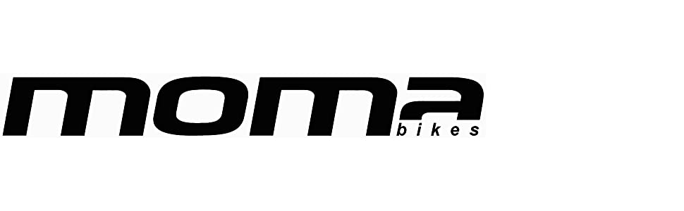 bici bicicleta fixie fixed fixi decathlon sprinter bh piñón libre fijo flip/flop