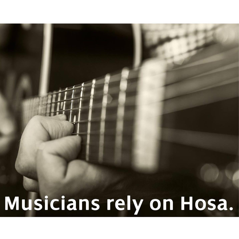 hosa gpp 296 1 4 inch ts to 1 4 inch ts guitar pedal