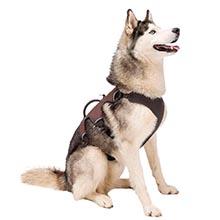 Ferplast 75467127 Pettorina Ergonomica per Cani