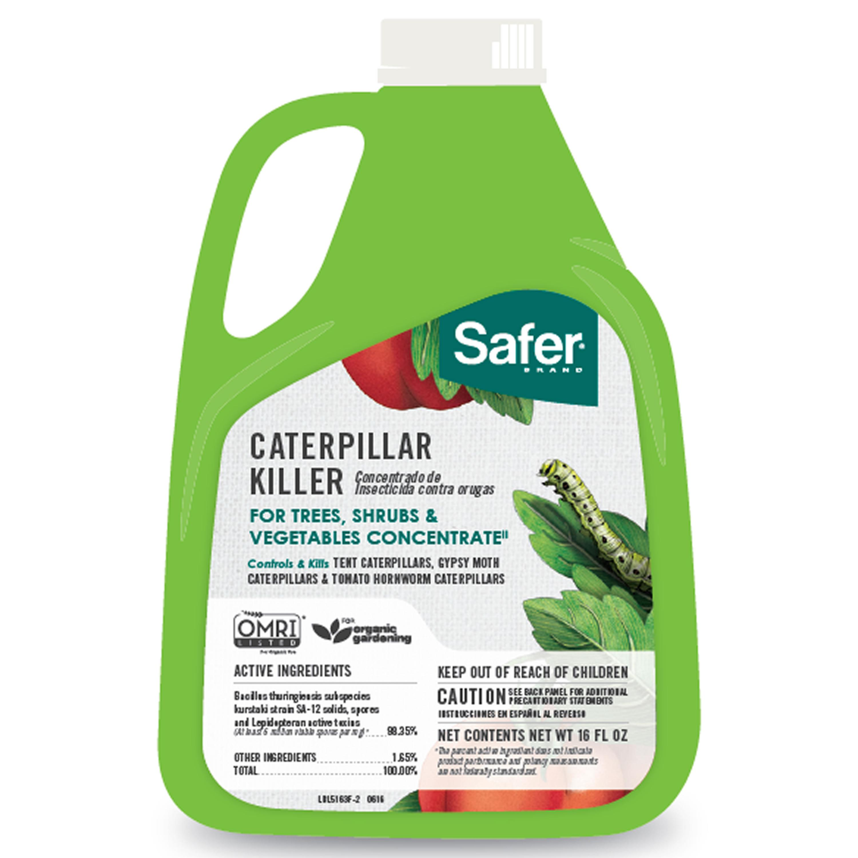 Amazon.com : Safer Brand 5163 Caterpillar Killer II Concentrate, 16 oz