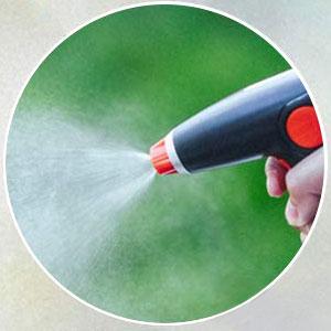 Amazon Com Acg Inc Electric Plant Mister Spray Bottle