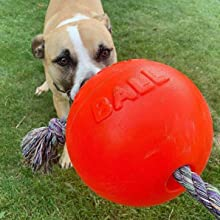 dog toy,dog bag,dog ball,dog,indestructible dog toy,large breed, aggressive chewer, made in the usa