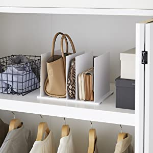 Bag Organizer with Customizable Dividers