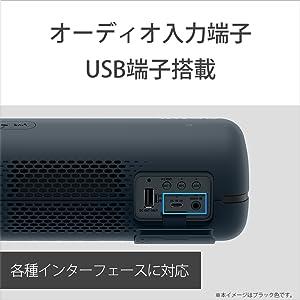 本体背面にオーディオ入力端子、USB端子(外部充電用)を搭載しています