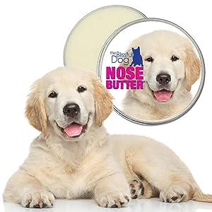 Amazon Com The Blissful Dog Golden Retriever Nose Butter 8 Ounce