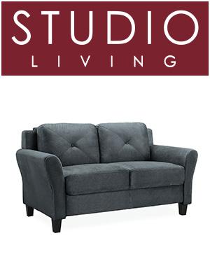 Amazon.com: Lifestyle Solutions Harrington - Sofá de dos ...
