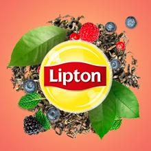 comment préparer une délicieuse tasse de thé, rapide, qualité, goût, dégustation, thé noir, capsules