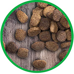 Dry Kibble, Dog Food, Complete, Balanced, Nutritional, Health, Meat, Protein, Food for Dogs