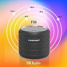 FM-enabled Speaker