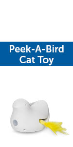 best interactive cat toys; cats meow toy; cat teaser; laser light for cats; kong; automatic cat toy