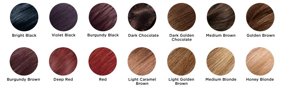 Amazon Com Revlon Colorsilk Luminista Haircolor Honey Blonde 1