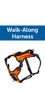 walk along walkalong harness