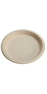 compostable 10inch plates