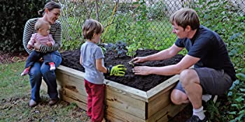 sustainable living, homestead, self-sufficiency, backyard, chickens, hens, bees, farm, family, shed