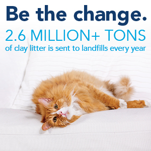 cat litter, natural cat litter, wood cat litter, clumping litter, natural clumping litter