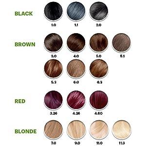 Garnier Color Chart