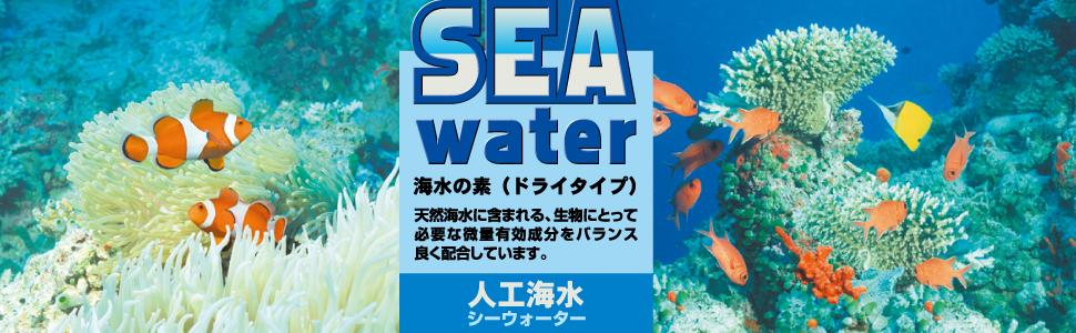 海水,sea,シー,ウォーター,海水魚,人工,水道水,イソギンチャク,カクレクマノミ,ミネラル