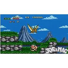 Amazon.com: Retro-Bit Joe & Mac: Ultimate Caveman Collection ...