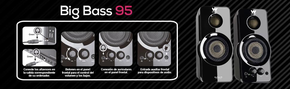 Big Bass 95