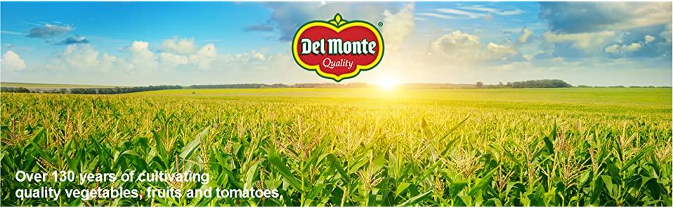 Del Monte Banner