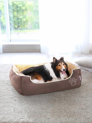 Cama de perro tan adorable