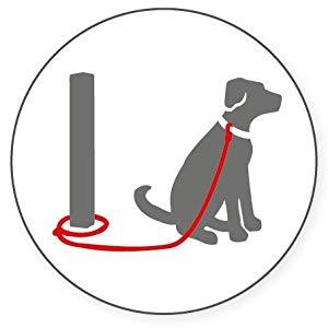 halti double-ended leash lead harness headcollar no pull