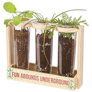 gardening for kids, kids gardening, outdoor activities for kids, plant growing for kids, stem, steam