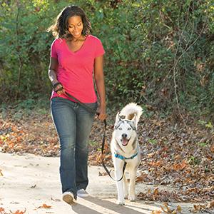 Petsafe, easysport, harness, no pull, pulling, dog, collar, leash