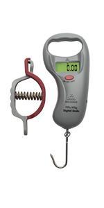 reelsonar digital fish scale
