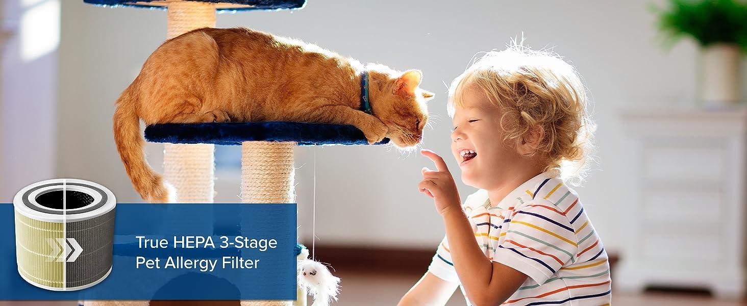 Pet Allergy Filter