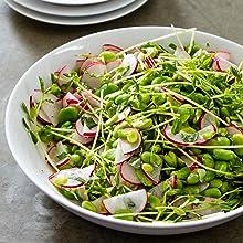 Fava Bean; Salad