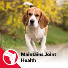 MAINTAINS JOINT HEALTH