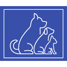xl dog house, casas para perros, dog house for large dogs, big dog house,