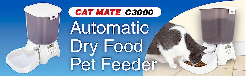 Auto lucy cat 2022 Lucid