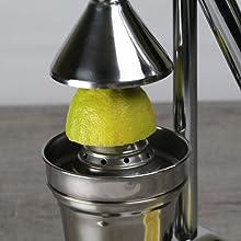 レモン 果汁