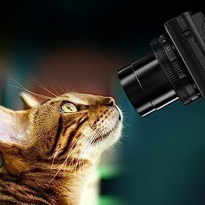 Macro Photography Captures Spectacular Close Ups