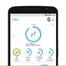 Fitbit App, Fitness Tracking