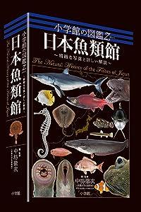 小学館の図鑑Z「日本魚類館」束あり