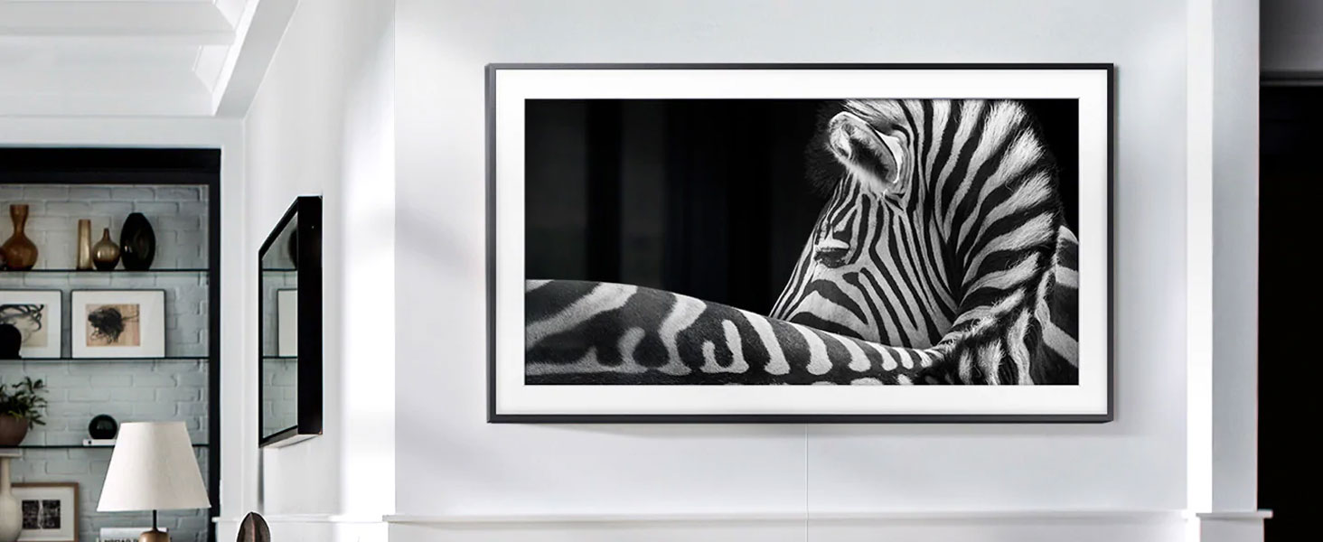 The Frame with a close-up of a zebra in HDR 10+