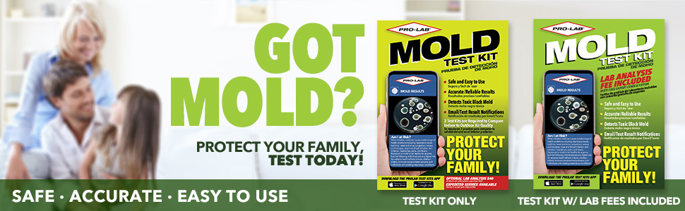 mold test kits for home